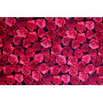 Patchwork - Røde Roser
